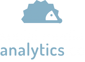 Social Media Analytics.co logo